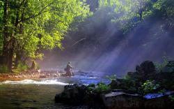 Cool Fly Fishing Wallpaper 8566