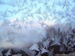 Wallpaper: Frost wallpapers