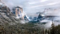 Cool Morning Fog Wallpaper 14055