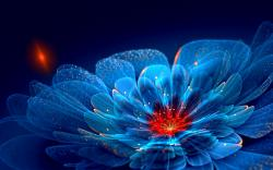 Wallpapers for Gt Neon Flower Backgrounds