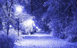 Snowflakes Falling Wallpaper 37178