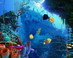 http://freewallpaperspot.com/36-coral-reef-wallpaper.html/coral-reef-1