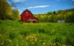 Summer countryside pennsylvania