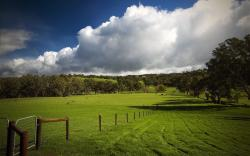Countryside Landscape 5132