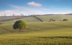 Views: 2098 Countryside 5140
