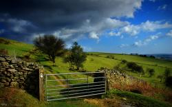 Rustic Countryside Wallpaper