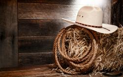 HD Wallpaper   Background ID:437648. 2560x1600 Photography Cowboy