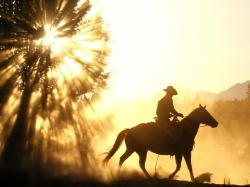Cowboy Horse Sunset Free Desktop Wallpaper