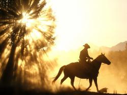 Cowboy Horse Sunset Free Desktop Wallpaper