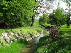 Creek Wallpapers 14346