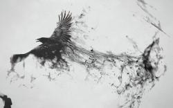 Crow turning into smoke wallpaper