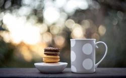 Cup Cookies Macaron Food Sweets