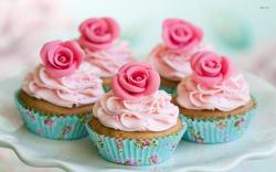 Blue and Pink Cupcake Backgrounds
