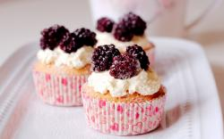 Cupcakes Berries and Cream