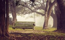Cute Bench Wallpaper