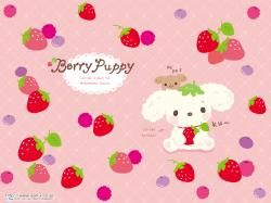 "Berry Puppy Wallpaper Scroll down slightly to see more under ""You May Like"""