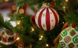 Cute Christmas Ornaments Wallpaper 38746 1920x1200 px
