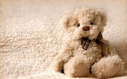 Cute Teddy Bear 5
