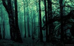 Dark Forest (17)