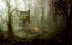 dark swamp hd wallpaper