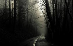 Dark Wood HD Wallpapers-4