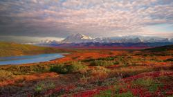 Denali National Park HD