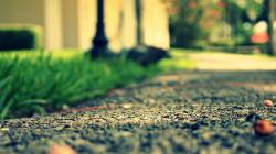 Depth of Field Wallpapers