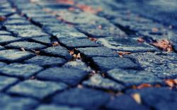 Download Wallpaper pavement depth of field cobblestones fallen leaves -15372-3