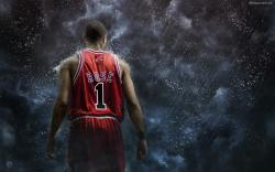 Derrick Rose Wallpaper 2013 1920x1200