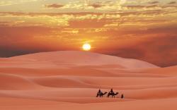 Desert evening sun