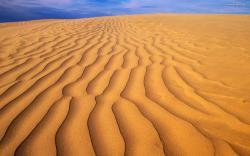 Trendy Desert Background Images Wallpaper 1920x1200px