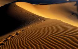 Desktop Wallpaper · Gallery · Computers Desert sand vista background