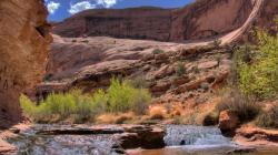 Desert Stream desktop wallpaper