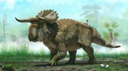 New Dinosaur Is Pretty Rad Looking