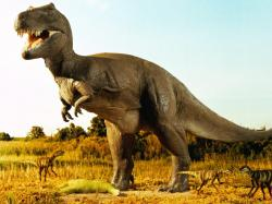 """If the asteroid hit five million years later or earlier, the dinosaurs might still be around,"" says paleontologist Stephen Brusatte of the United Kingdom's ..."