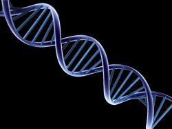 DNA Design ...
