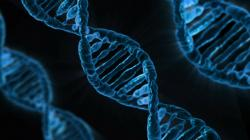 Some Perfectly Healthy People Have Disease Lurking In Their DNA | Popular Science