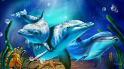 Download Full HD Wallpapers absolutely free for your desktop pc, laptop desktops. Dolphin Wallpaper