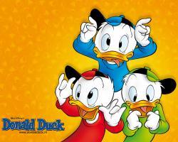 Wallpaper For Phone Donald Duck