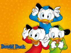 Donald Duck Wallpapers. Click the picture to see the real size