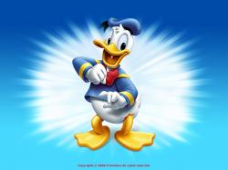 Disney Donald Duck Wallpaper
