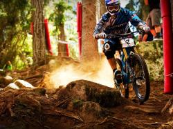 Downhill HD Wallpaper