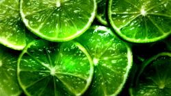 Download Wallpaper Lime Citrus Green Free Desktop in 1920x1080px