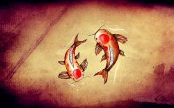 Drawing Koi Fish Art