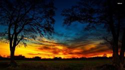... Field at dusk wallpaper 1920x1080 ...