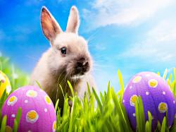 Happy-Easter-happy-easter-all-my-fans-30389589-