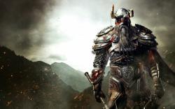 Elder scrolls viking