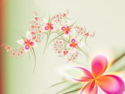 SIMPLE & ELEGANT Wallpaper
