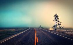 Empty Road W Fog Wallpaper 2560x1600