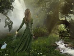 Enchanted Forest Titusboy Hqqgz Wallpaper